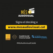Per un audiovisual en català