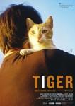 IX Premis Gaudí Tiger · Curtmetratge candidat